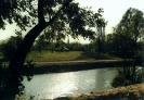 Brázay kastélypark